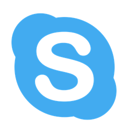 skype online counselling